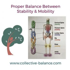 Proper Balance Between Stability & Mobility